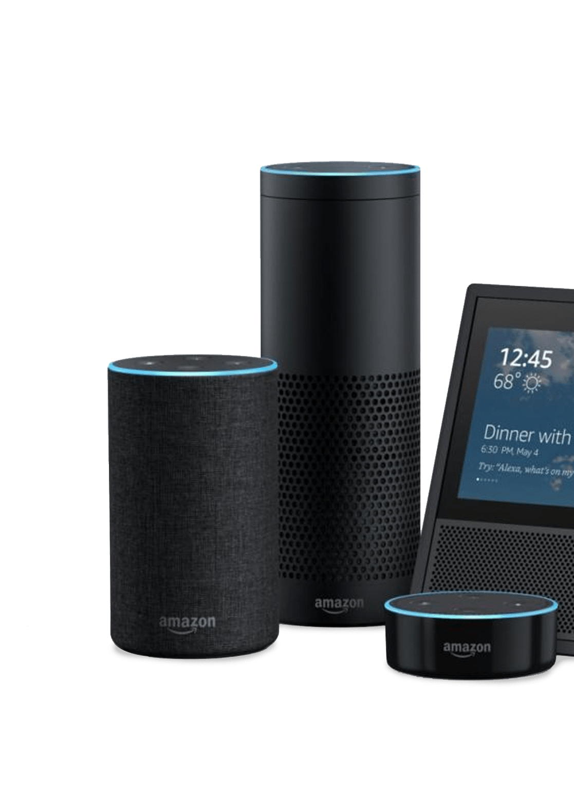 Various voice-enabled devices